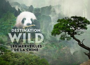 LES MERVEILLES DE LA CHINE